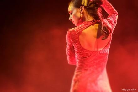 """Spanish flamenco theater """"AMORODIO"""" first time in Lithuania! Vilnius, Kaunas, Alytus, Vilkaviškis"""